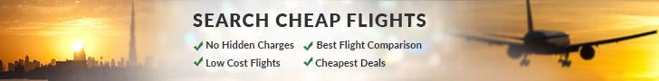 'Dubai Hotels - City and Guide' from the web at 'http://www.dubai.com/media/img/dubai/booking/flights_top.jpg'