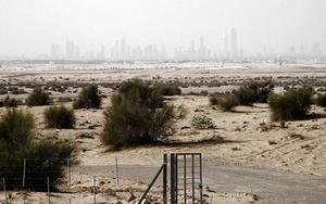 Thumbnail for Land Transactions in Dubai on the raise