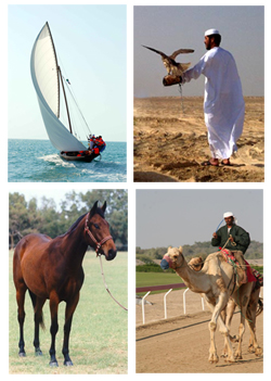 Traditional Sports in UAE