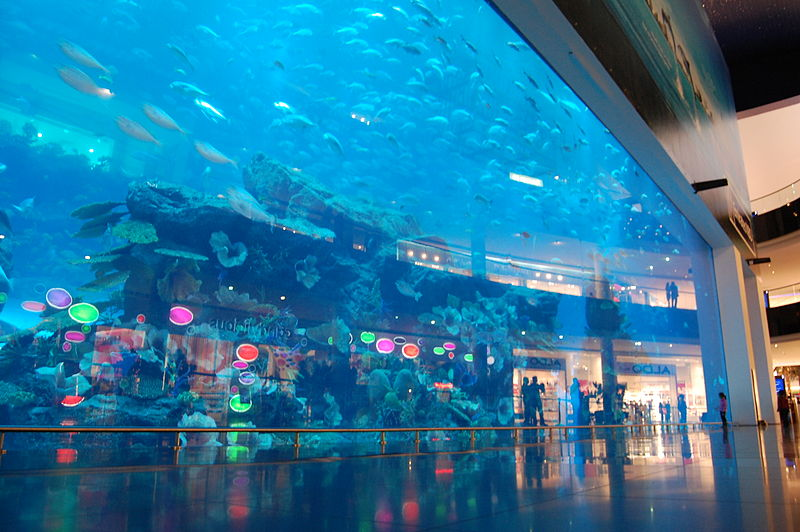 Dubai Mall Aquarium (Creative Commons / Frank Seiplax)