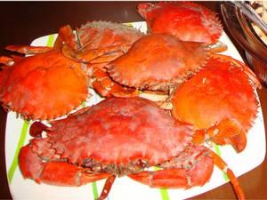 Crab Seafood 2