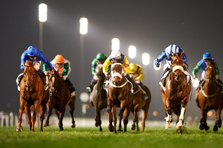 Credit: Dubai World Cup