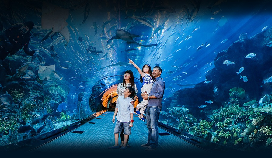 Credit: Dubai Aquarium and Underwater Park